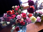 Carnations as a tip