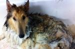 Pluto in the bath