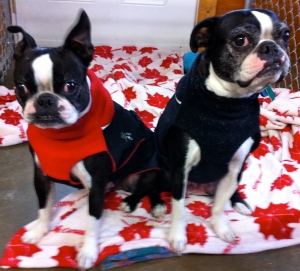 Otis & Charlie