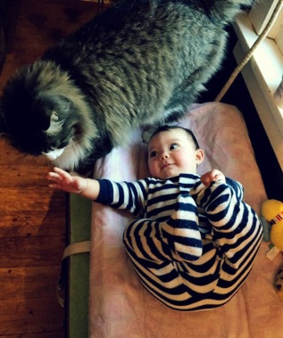 Juno&CatJanuary2016