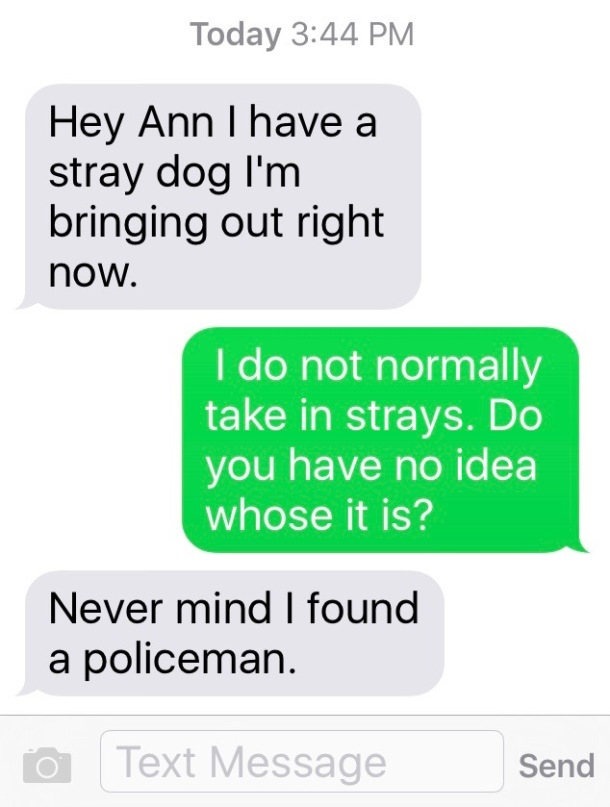 StrayDogDemand
