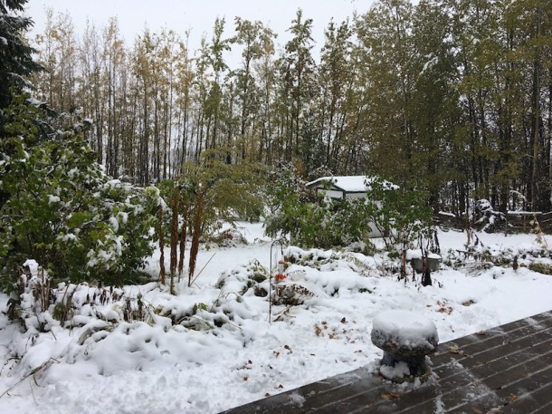 FirstBigSnow2017October