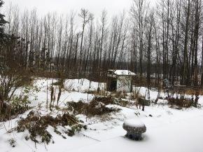 Blanket of snow …
