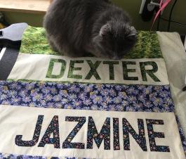 BlanketsJazmine&Dexter
