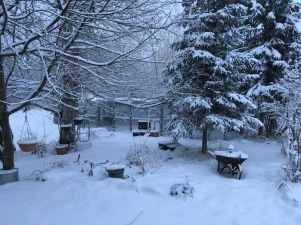 SnowYardMarch30-2