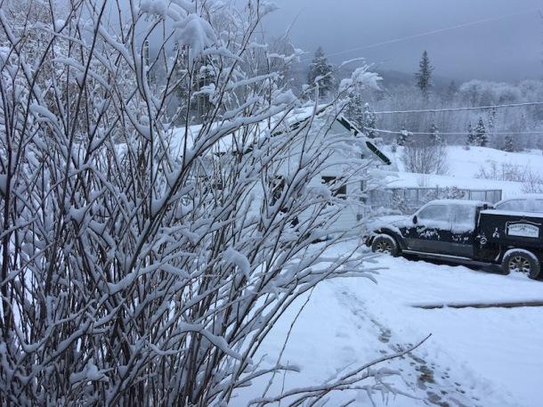SnowYardMarch30-3